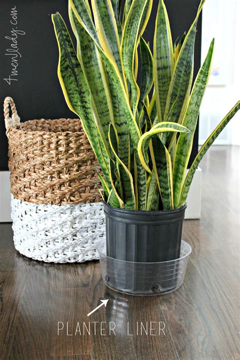 Basket Planter by Diy 2 Toned Planter Basket