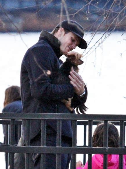 tom brady yorkie gosling lively with dogs pictures best of 2011
