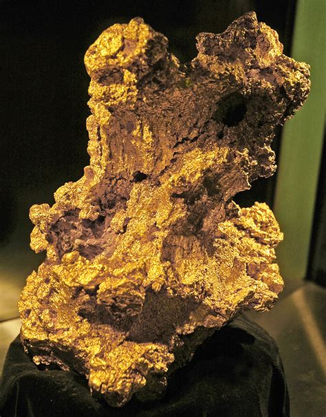 The Gold Nugget golden australia s gold nuggets