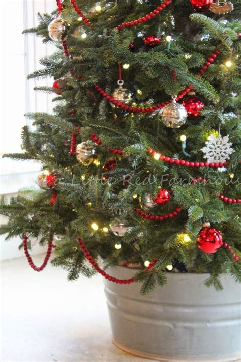 best 25 real christmas tree ideas on pinterest