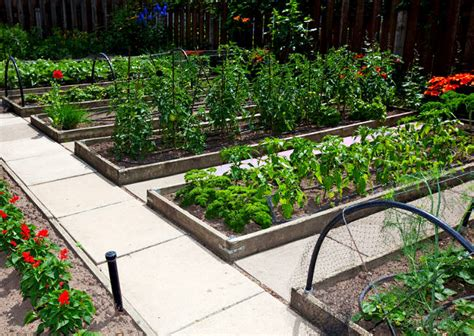 Raised Garden Beds Versus Row Gardening How To Build A House Raised Bed Vegetable Gardening