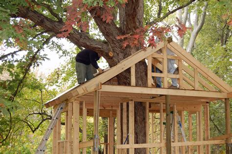 tree house plans for one tree tree house building plans smalltowndjs com