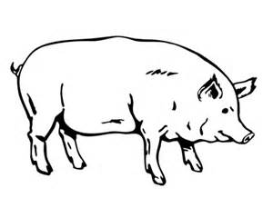 fat pig coloring free printable coloring pages