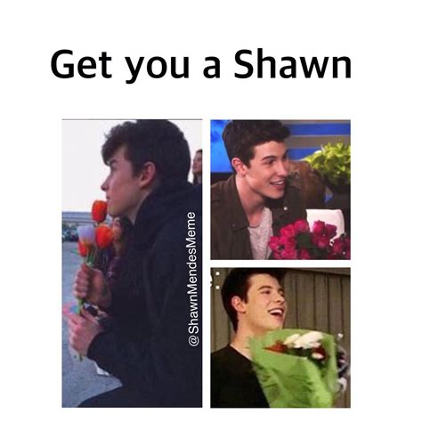 Shawn Meme - shawn meme pictures to pin on pinterest pinsdaddy