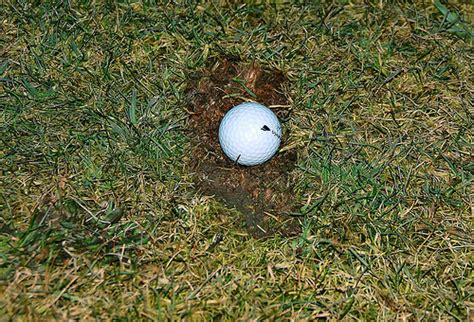 golf swing divot after ball where do you drop when a divot hole marks the previous