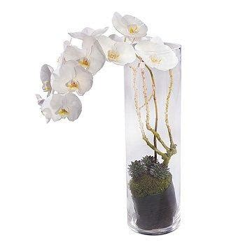 Orchid Arrangements In Vases by White Orchid Vase Arrangement Scents Florist