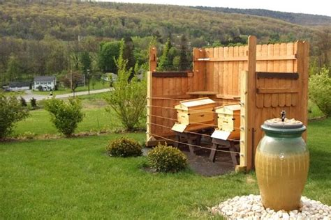 backyard beehive hive setup with fence and water