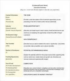 professional summary template template design