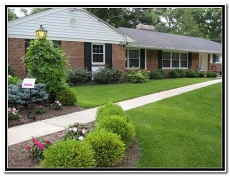 26 best images about yard shrubs on garage