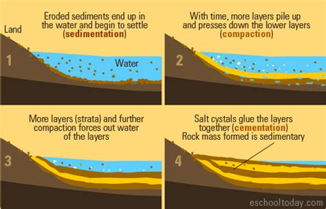 diagram of how sedimentary rocks are formed clastic sedimentary and its environments