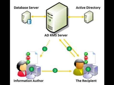service in rights how to configure installing active directory rights management services adrms in