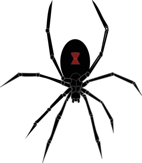 spider tattoo png black widow spider clip art at clker com vector clip art