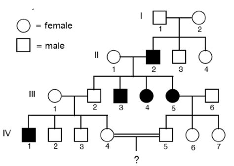 pedigree pattern quiz solved for each pedigree below determine the most likely