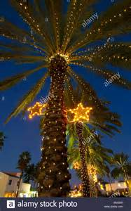 palm trees decorated with christmas lights in the normandy