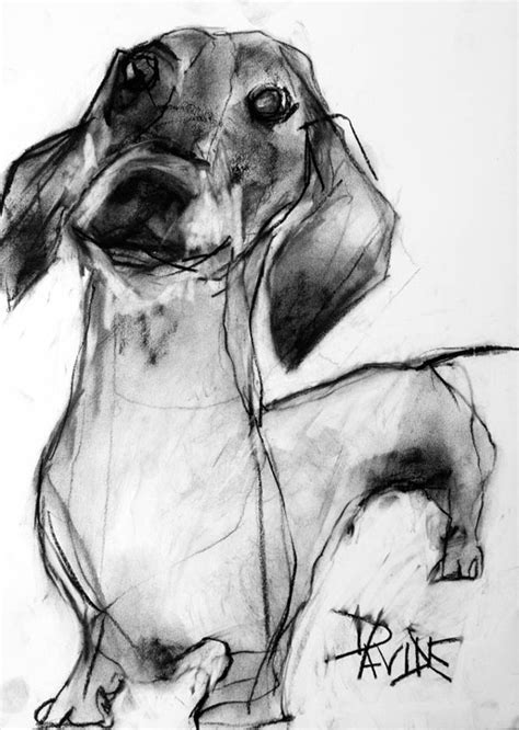 charcoal for dogs charcoal portraits by valerie davide milk