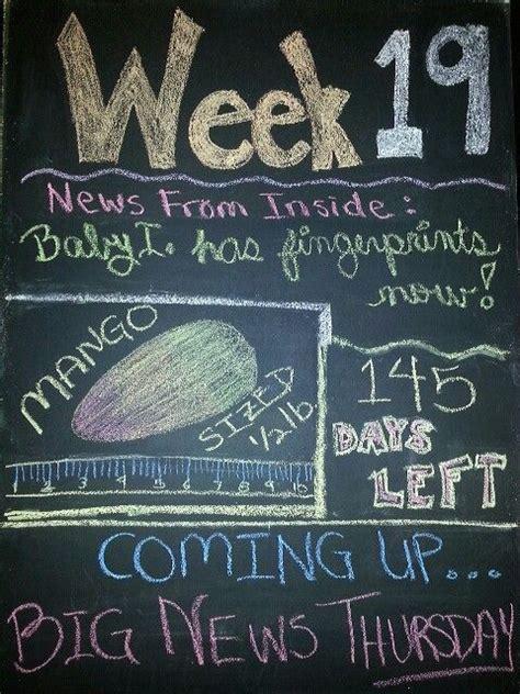 fruit 19 weeks week 19 pregnancy tracker week by week fruit and
