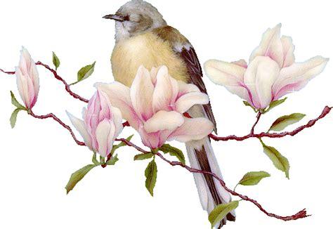 kumpulan gambar animasi burung lucu bergerak kartun burung terbang animated bird animasi