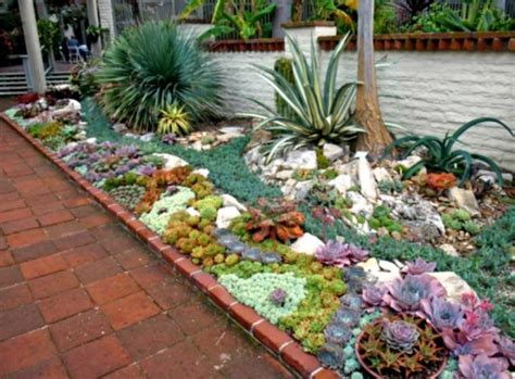 mini rock garden ideas best of succulent rock garden ideas d home design houzz