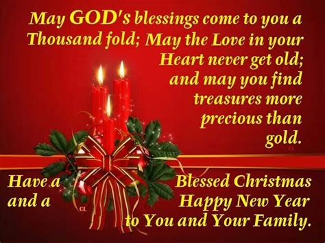 have a blessed christmas and a happy new year greetings