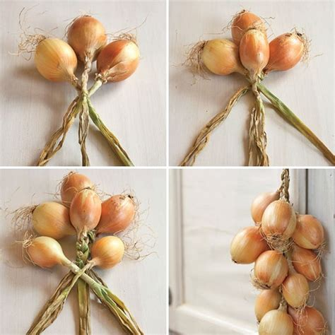 Shelf Of Onions by Why You Should Braid Your Onions Like A Pioneer