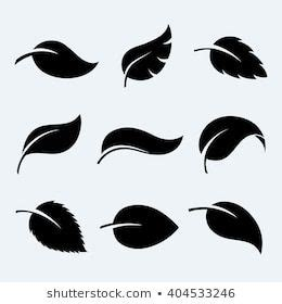 silhouetteleaves images stock  vectors