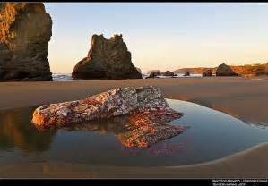 tide pools oregon coast map bandon oregon coast tide pool psimg 5394crop notsharp