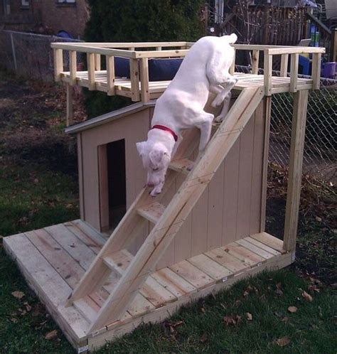 dog house with deck on top dog house no place like home pinterest rooftop deck dog houses and diy dog