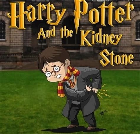 Kidney Stones Meme - best 25 kidney stones funny ideas on pinterest kidney