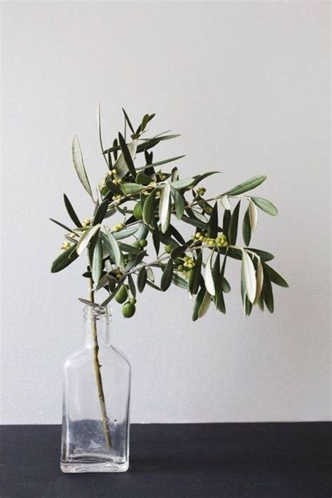 Artificial Pine Trees Home Decor olive branches olives and branches on pinterest