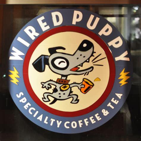wired puppy boston thumbnail wired puppy boston dsc 7214 brian s coffee spot