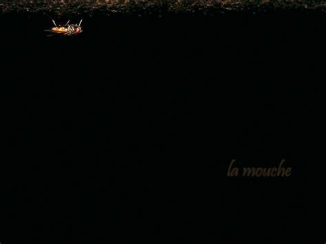 imagenes oscuras fondos fondos de pantalla de wallpaper oscuras con efectos