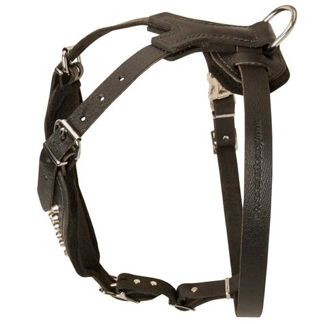 Handmade Harness - handmade leather rottweiler harness with pyramids