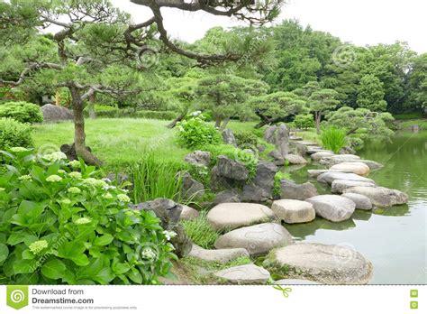 zen water garden grasses stone bridge and water pond in japanese zen