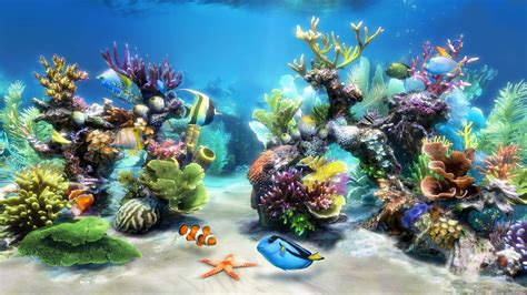 live wallpaper for pc aquarium sim aquarium virtual aquarium screensaver and live