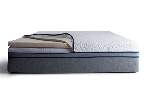 Best Bed For Back Sleepers by Best Mattress For Back Sleepers The Sleep Sherpa