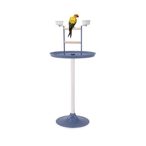 gabbie per pappagalli gabbia per pappagalli vogue imac