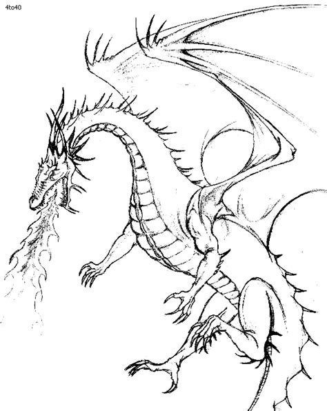 dragon coloring pages realistic 25377 bestofcoloring com