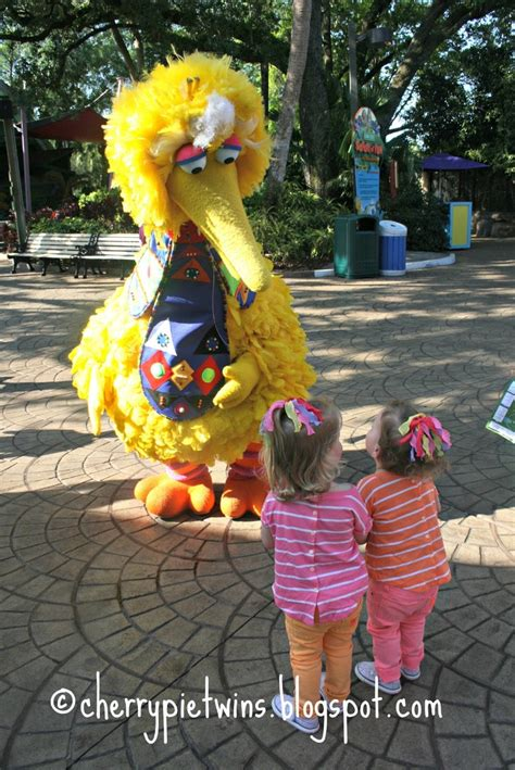 Busch Gardens Sesame by 50 Best Images About Busch Gardens Ta Bay Trip On