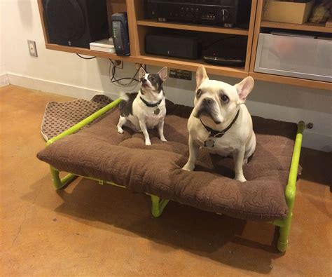 pvc pipe dog bed how to buildmodern style platform bed tos diy with dog