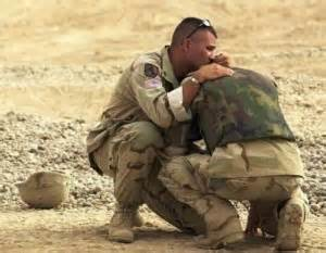 What career would help fellow soldiers with ptsd
