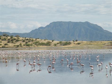 Style Of Home Adobe by Lake Magadi Kenya Explore Crazydinx S Photos On Flickr