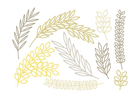 vector outlined branches set   vectors