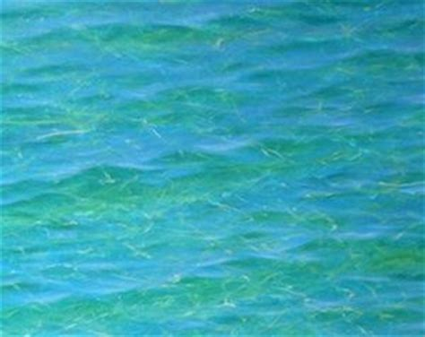 acrylic painting water learn how to paint amazing luminous clear tropical water