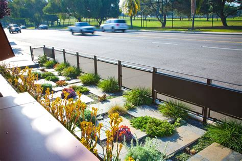 drought resistant landscape make simple fresh and modern drought tolerant landscaping