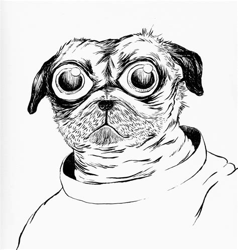 pug davis pug davis by hemato on deviantart