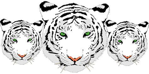 gambar harimau format png kepala harimau putih www pixshark com images galleries
