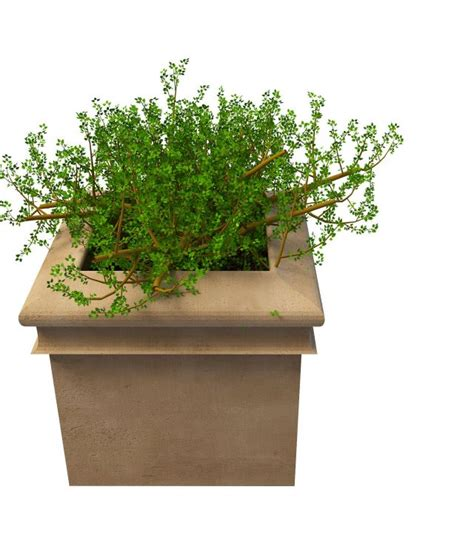 large outdoor garden planter  model ds max files