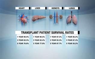 trendssoul by 246 zlem yan devrim organ transplant