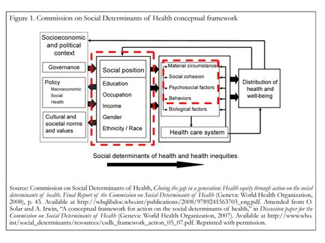Social Model Of Health Essay by Determinant Site Meddic