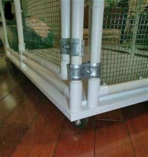 Rabbit Cage Hutch Sahja Siamese And Oriental Cage Plans Pvc Pipe Cages